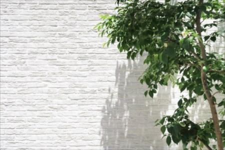 外壁塗装で使用する塗料とは? 〜種類が豊富な塗料〜